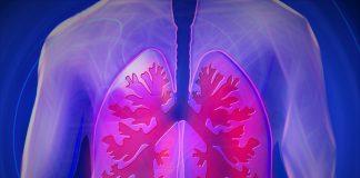 Cellule di cancro del polmone il pericolo è appropriato per voi